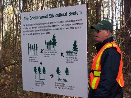 """FPRF Board Member Frank Knaapen discusses white pine silviculture on a """"Walk in the PRF"""""""