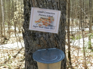Volunteers Ian Miller and Michelle Stein operate the sugar bush at the PRF in spring for children's groups.