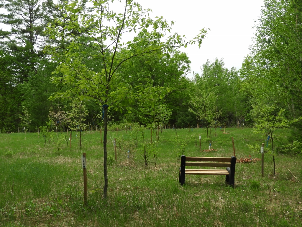 PRF Arboretum